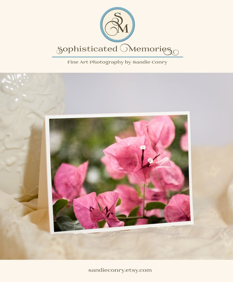 Tropical Flower Greeting Card  Floral Photography  image 0