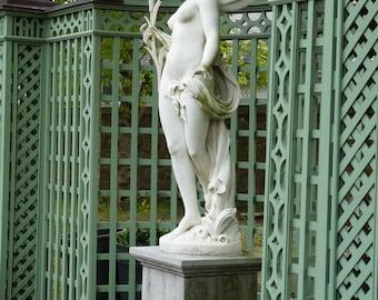 Angel Statue- Photograph