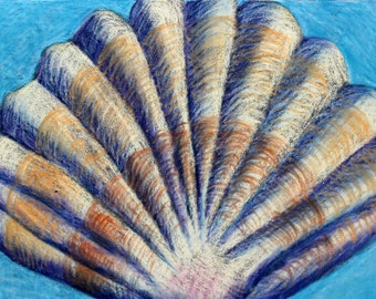 Seashell Drawing- Original 5x7 Pastel Drawing