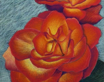 Magenta and Orange Roses- Original Pastel Drawing 11x14