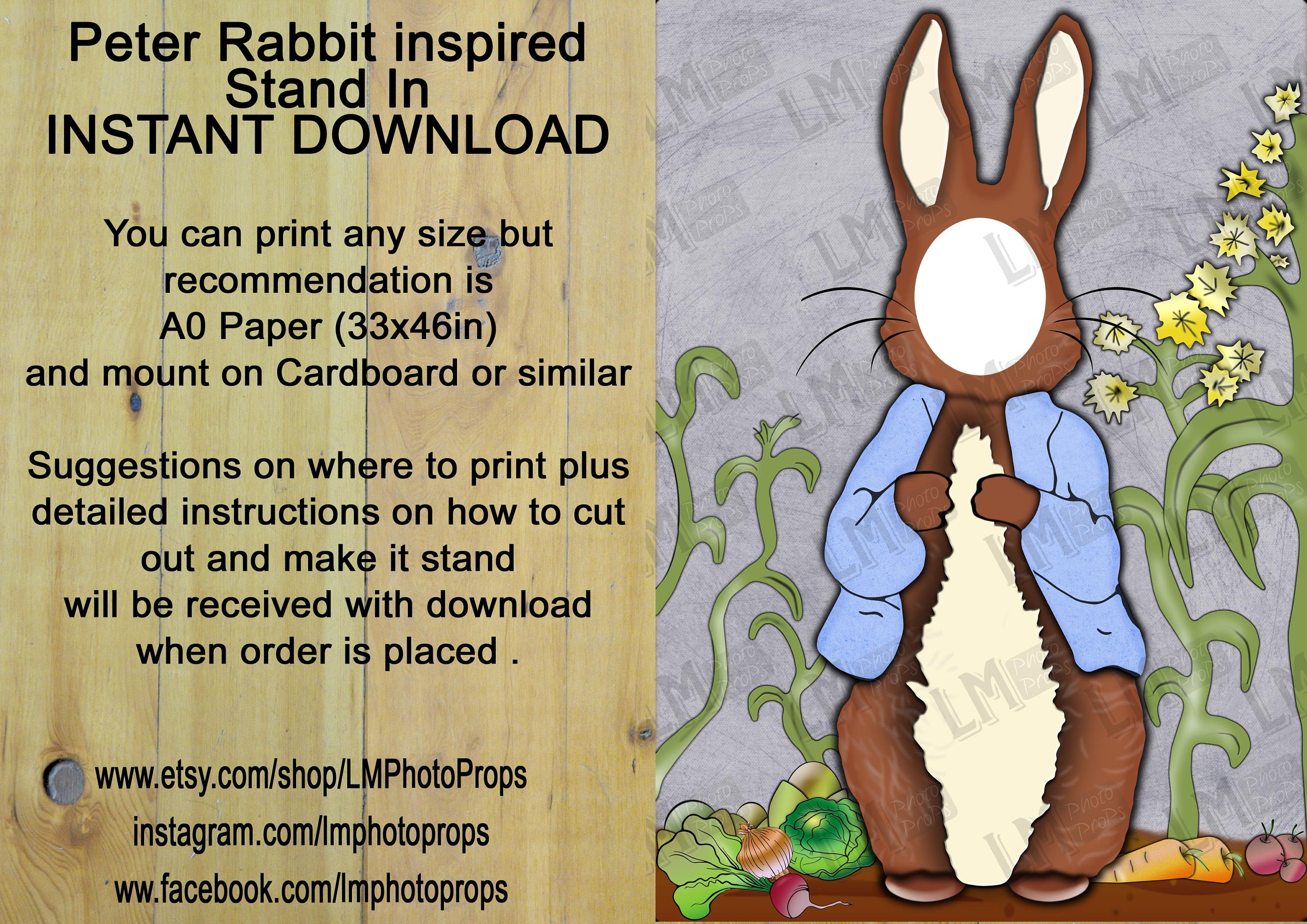 Peter Rabbit Head In Hole Style Photo Stand