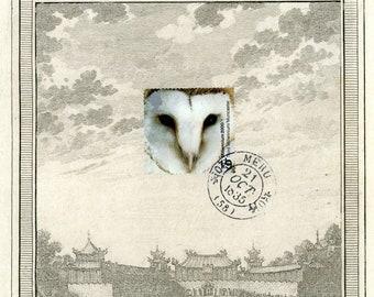 The Owl an the Elephant