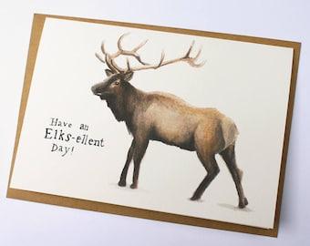 Have an Elks-ellent Day!