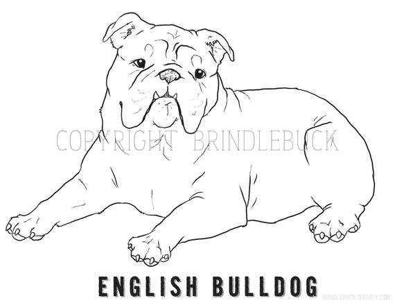 Articoli Simili A Bulldog Inglese Cane Coloring Page Arte Del