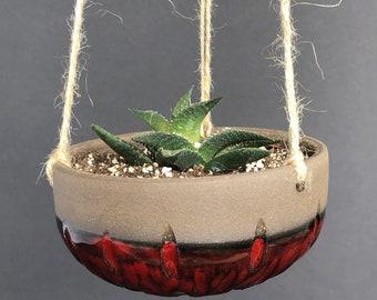 Blood red hanging planter