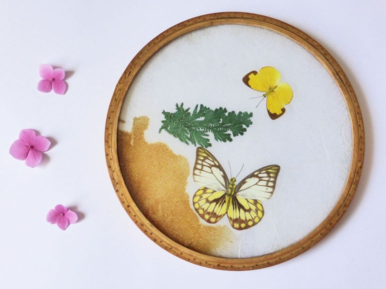 Vintage Pressed Butterfly Tray Decorative Plate Vintage image 0