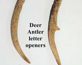 Unique 1 of a kind Deer Antler letter openers