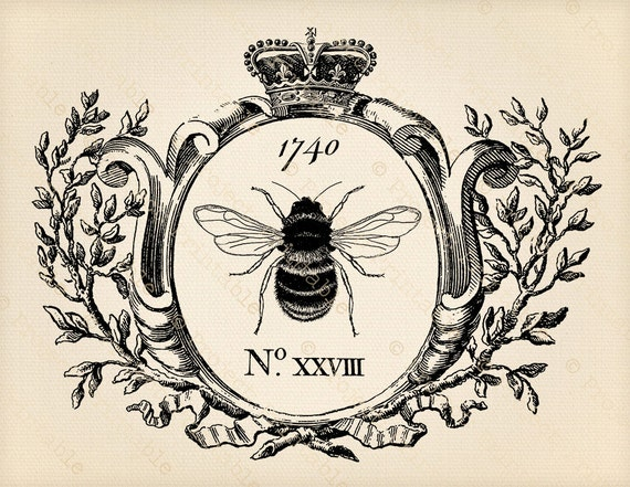 Printable Clipart Vintage Honey Bee Graphics In Frame Etsy