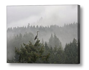 Blue Heron, Wall Art, Canvas Art, Pacific Northwest, Misty Photograph, Large Art, Landscape Photograph, Nature Photography, Bird Photograph