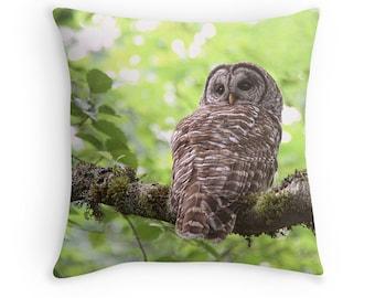 Owl Cushion, Owl Gifts, Owl Decor, Owl Pillow, Woodland Decor, Barred Owl, Nature Decor, Hoot Owl, Nature Cushion, Woodland Pillow, Raptor