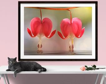 Romantic Wall Art, Valentines Day Gift, Bleeding Heart, Floral Art Print, Garden Art, Romantic Gifts, Flower Print, Garden Decor