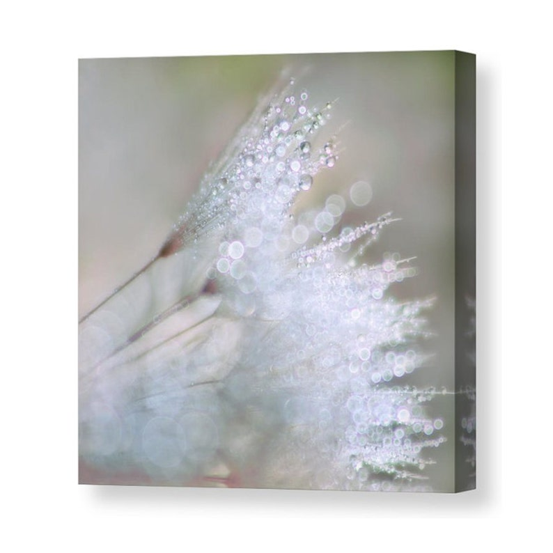 Dandelion Canvas Dandelion Art  Neutral Wall Art Flower image 0
