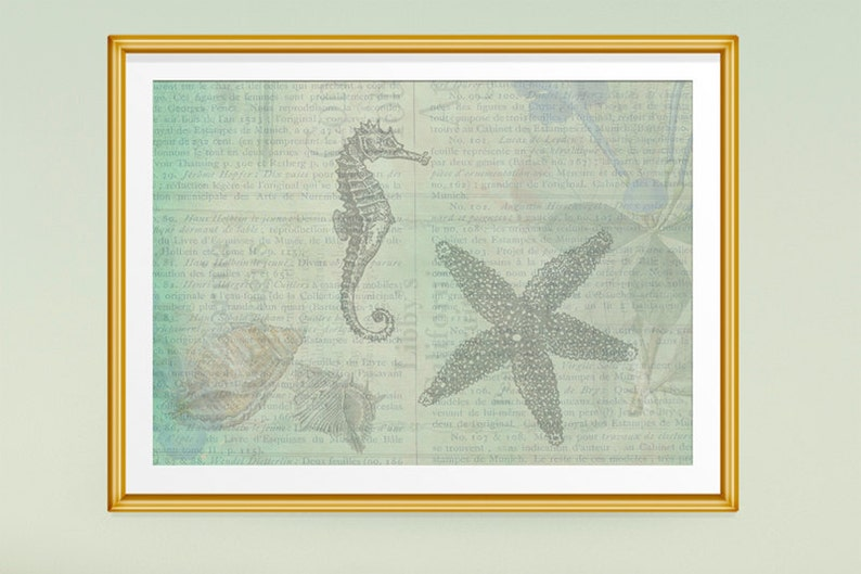 Ocean Art Ocean Theme Sea Theme Seahorse Starfish image 0