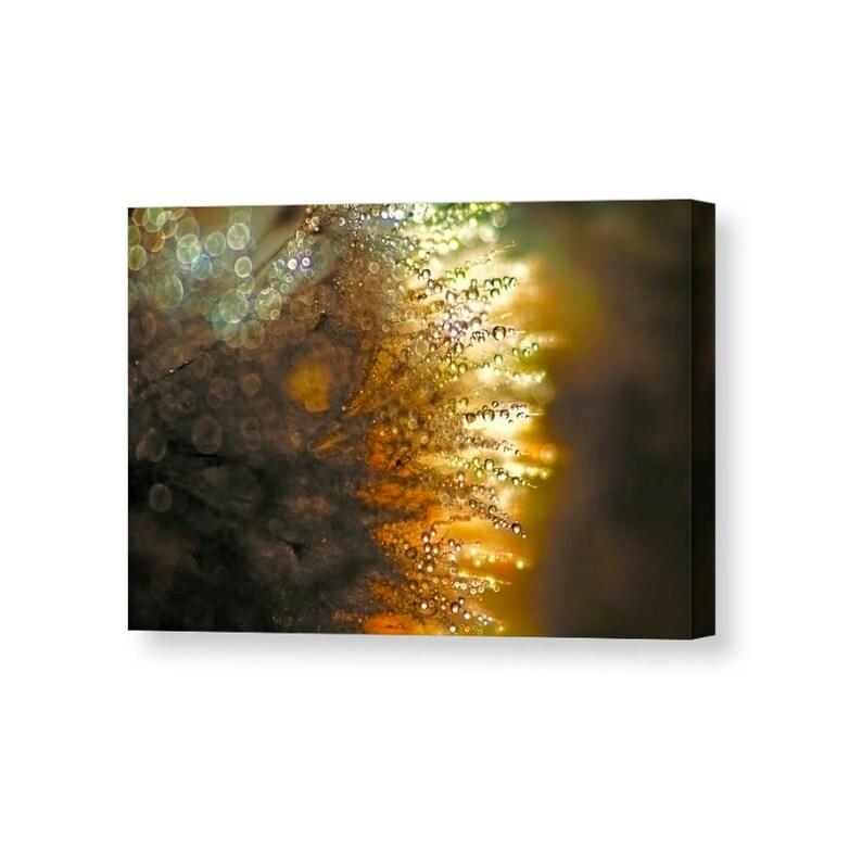 Canvas Art Gold Canvas Art Water Drops Dandelion Wall Art image 0