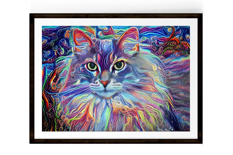Crazy Cat Lady Maine Coon Cat Psychedelic Art Cat Print image 0
