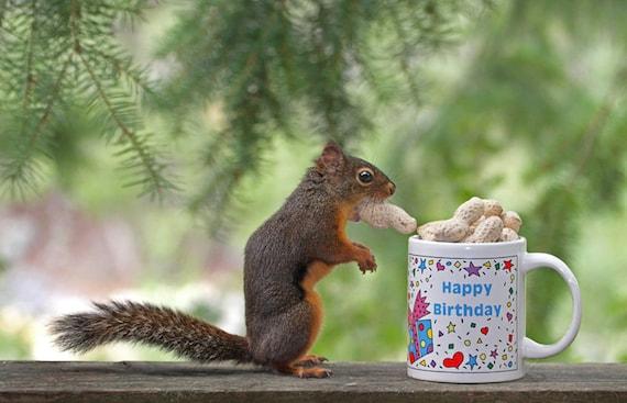Geburtstag Drucken Lustige Geburtstag Happy Birthday Etsy