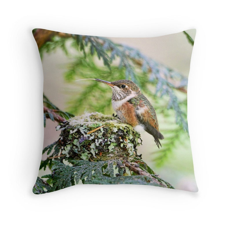 Bird Decor Hummingbird Pillow Hummingbird Cushion Nature image 0