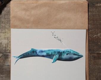 The whale postcard illustration