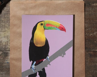 L'illustration toucan carte postale