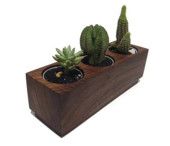 Succulent planter - Walnut Handmade Planter with a natural finish, for birthday and wedding, wood planter.