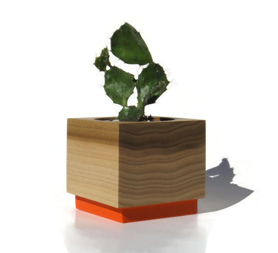 Succulent planter - Poplar Handmade Planter - Orange with a natural finish, for birthday and wedding, wood planter.