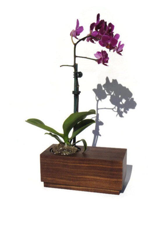 Succulent planter - Walnut Handmade Planter with a natural finish, for birtday and wedding, wood planter.