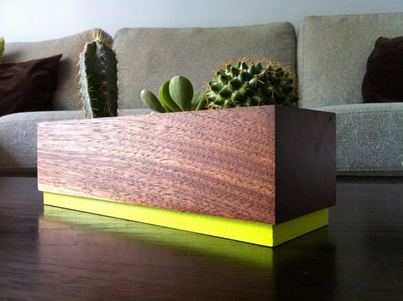 Succulent planter - Walnut Handmade Planter - Lime Pop with a natural finish, for birthday and wedding, wood planter.