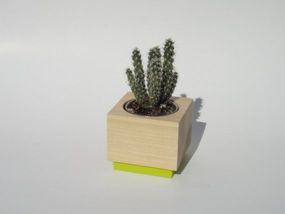 Succulent planter - Poplar Handmade Planter - Lime Pop with a natural finish, for birthday and wedding, wood planter.