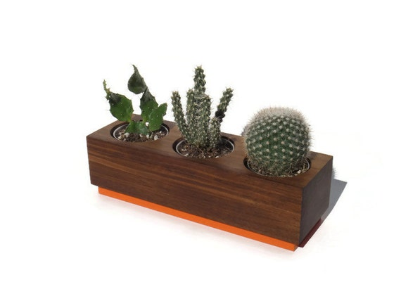 Succulent planter - Walnut Handmade Planter - Orange with a natural finish, for birthday and wedding, wood planter.