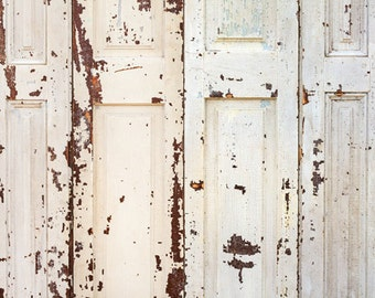 White Peeling Wood Door Photo Backdrop Baby Children Photoshoot Background Rustic Old Doors Photography Backdrops XT 3196