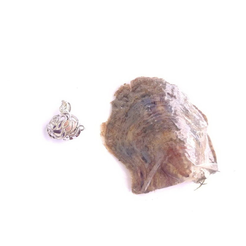 Large rose silver plated pearl cage pendant and chain available with or without oyster containing real cultured pearl