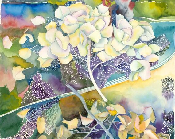 Reflections by Helen Yamada, white hydrangea, hydrangea art print, hydrangea watercolor, hydrangea watercolor print, hydrangea wall art