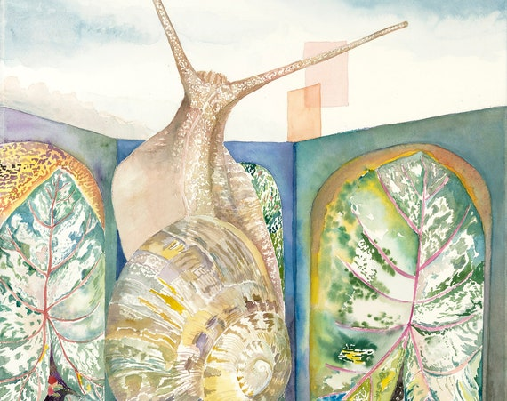 Snail watercolor print by Helen Yamada, snail watercolor, snail art, snail shell, watercolor snail, abstract snail art,