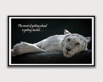 White Lion, Secret to Getting Ahead, Frame TV Digital Art