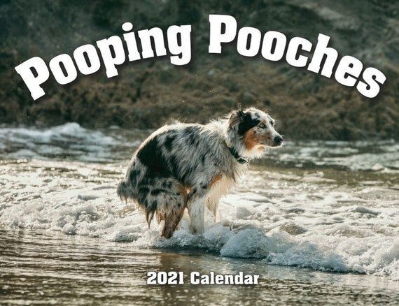 2021 Pooping Pooches Dog Calendar White Elephant Gag Gift   Etsy