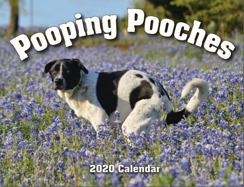 2020 Pooping Pooches Dog Calendar White Elephant Gag Gift image 0