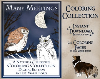24 Printable Wildlife Coloring Pages from Many Meetings: A Nature's Curiosities Coloring Collection Digital Download PDF by Lisa Marie Ford