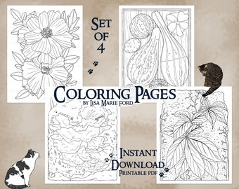 Butterfly Cosmos, Gourds, Fungus, Vine on Old Foundation, 4 Printable Coloring Pages, Fall Pictures from Autumn Colors by Lisa Marie Ford