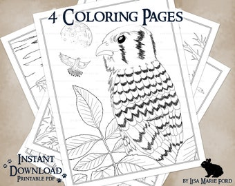 4 Wildlife Printable Coloring Pages: Canada Geese, Woolly Bear Caterpillars, Kestrels, Owls, from Many Meetings by Lisa Marie Ford
