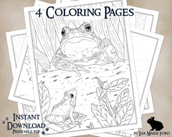 4 Wildlife Coloring Pages: Turtle, Toad, Spring Peeper, Duck, Duckling, Fawns in a Printable Download from Many Meetings by Lisa Marie Ford