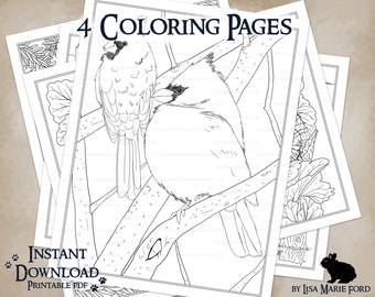 4 Wildlife Coloring Pages: Beavers, Cardinals, Bunny in Pansies, Mourning Doves, Printable Download from Many Meetings by Lisa Marie Ford