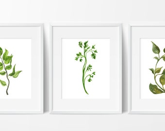 Herbs Kitchen Decor - Watercolor Herbs Prints - Botanical Print - Kitchen Art - Culinary Herb Print - Kitchen Decor - Instant Download 8x10
