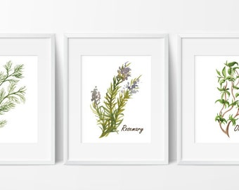 Herbs Prints - Watercolor Herb - Herbs Kitchen Decor - Botanical Print - Kitchen Art - Culinary Herb Print - Kitchen Decor - Download 8x10
