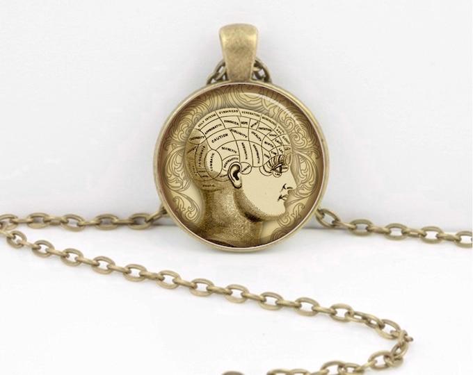 Psychology Vintage Anatomy Brain Head Print Pendant Necklace Inspiration Jewelry or Key Ring