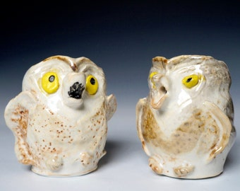 Porcelain Owl Pitchers, Hooting Owl Ceramic Owl Pitchers, Ceramic Bird Pitchers, Artsy Ceramic Pitchers, Unique Clay Art Pitchers, Bird Gift