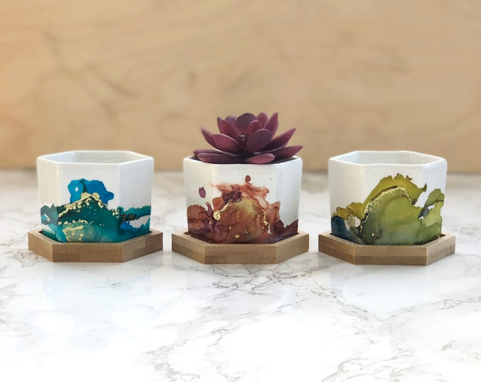 Hexagon Succulent Planters - Single or Trio