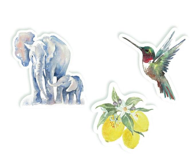 Elephant | Hummingbird | Lemon | Watercolor Vinyl Stickers