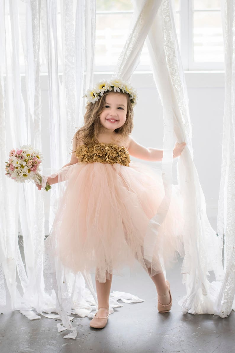 afc9884ca Blush and Gold Flower Girl Dress Blush Flower Girl Dress | Etsy