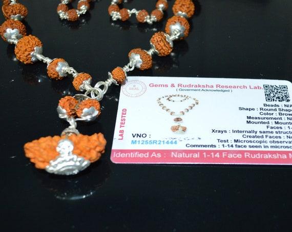 1 to 14 Mukhi Rudraksha Beads Silver Sidha Mala Siddha Sidh Sterling Silver,  Certified Rudraksh Mala Necklace, Genuine Beads knotted mala