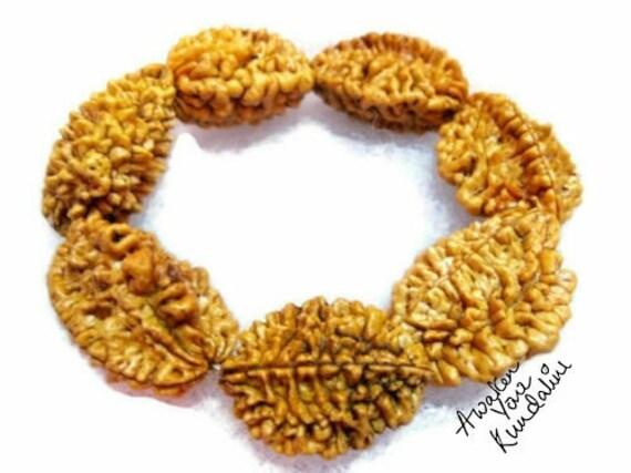 Genuine 2 Mukhi Rudraksha seed Mala Beaded Bracelet healing bracelet Two Face Rudraksh bead From Nepal Chakra Bracelet protection bracelet
